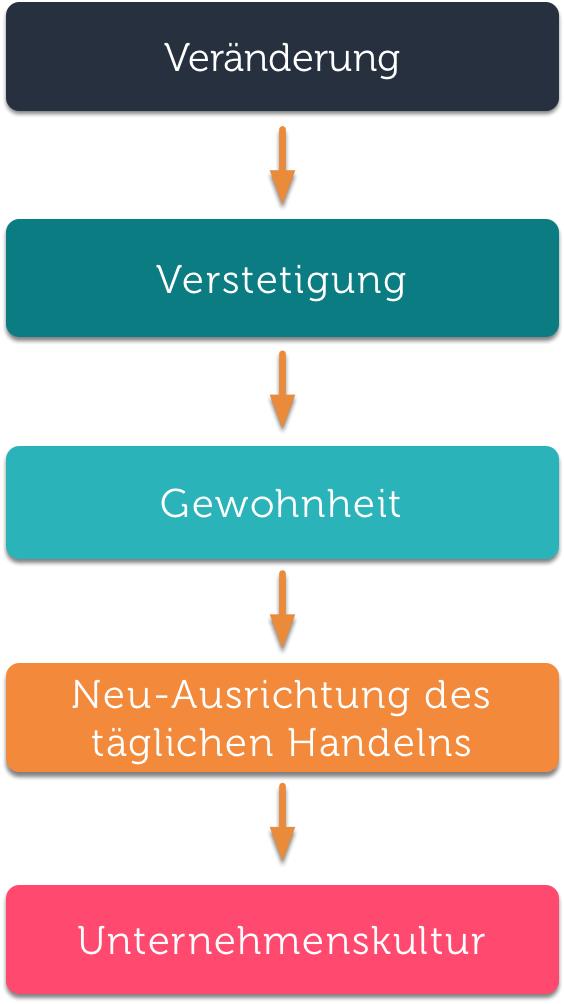 Kulturwandel in 5 Schritten
