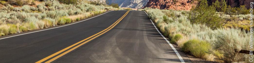 Leadership Journey: Road ahead